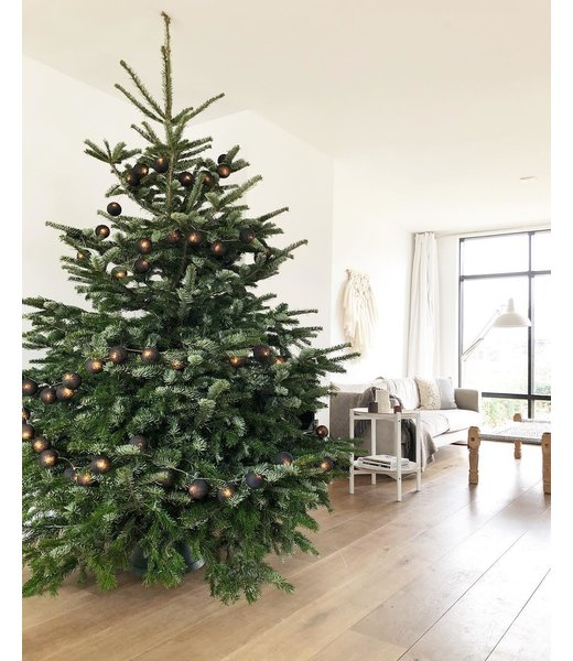 COTTON BALL LIGHTS Inspiration | Christmas | Regular Light String Black (@b_binnen)