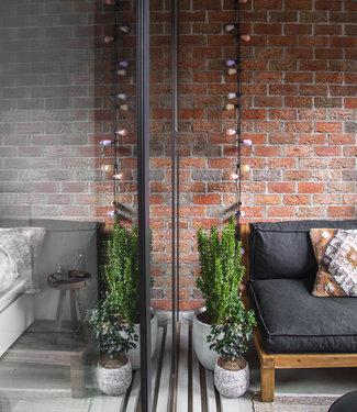 LEDR Regular Edison Bulbs Patio Lights  - Lavender