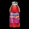Fruit Punch - 473ml x 12 - Glas