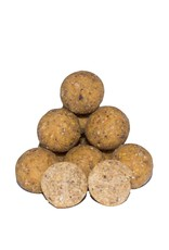 Baitworld Baitworld Scopex Tigernut Boilies introductie pakket