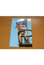 Pippi Langkous Pippi Longstocking card - Pirate
