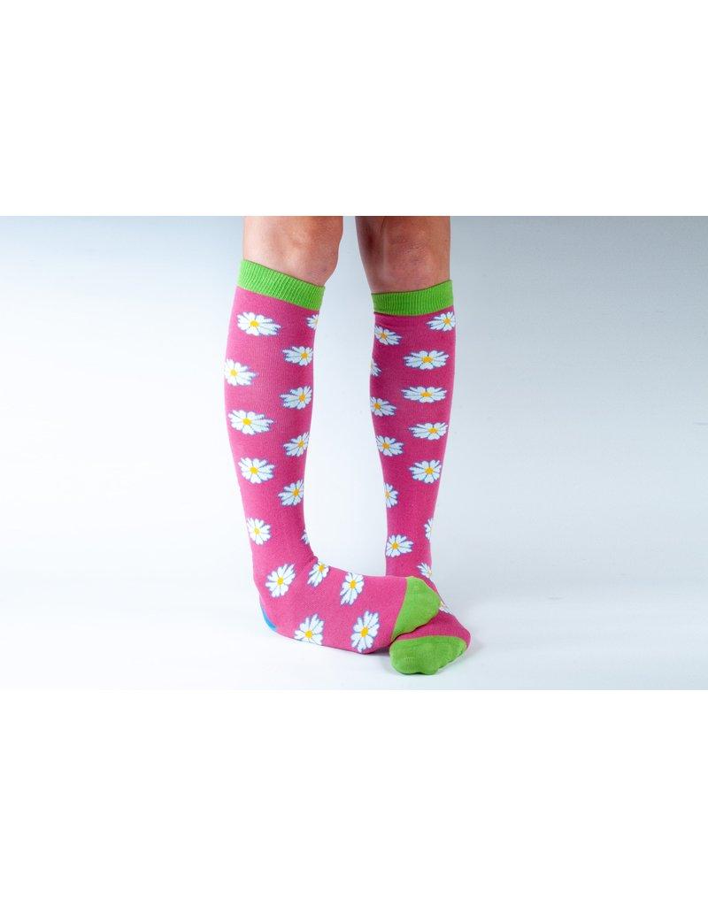 Doris & Dude Knee socks - Daisies (36-40)