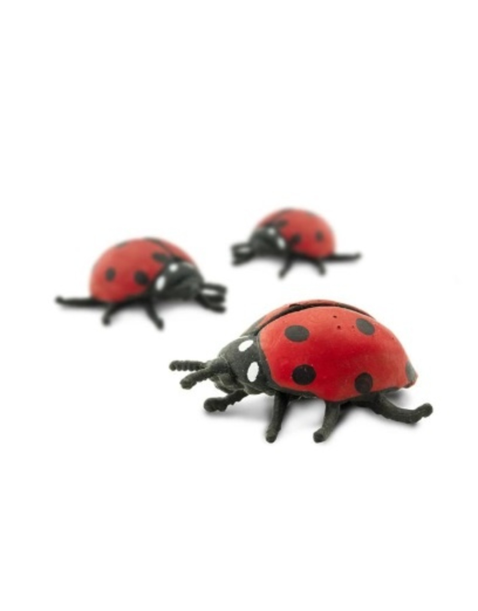 Goodluck mini - lieveheersbeestje