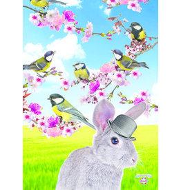 De Kunstboer - rabbit