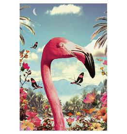 Ansichtkaart - Flamingo in de tuin