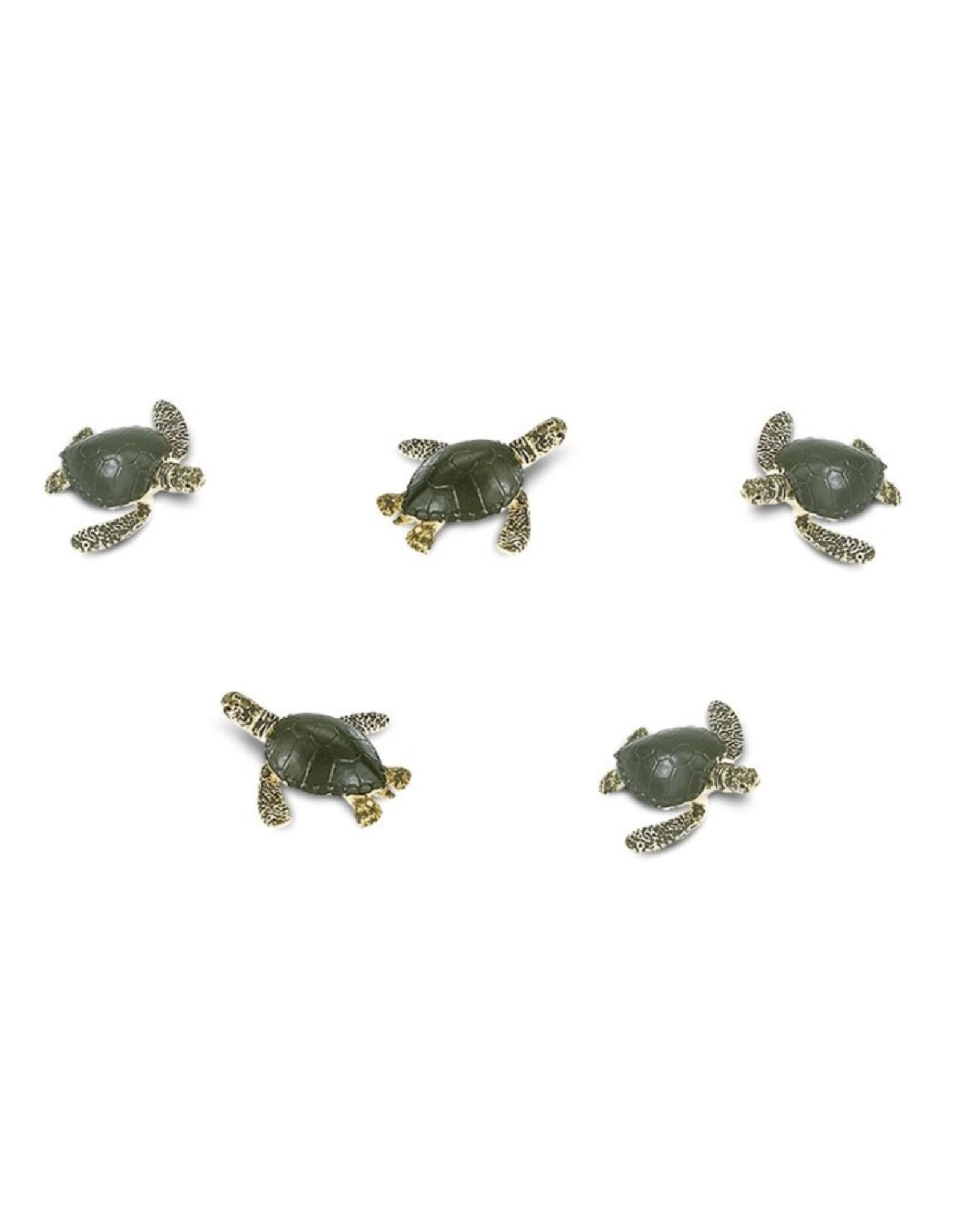 Goodluck mini - sea turtle