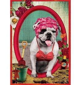 Postcard - badhond
