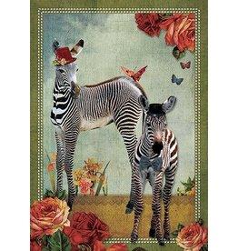 Ansicht kaart - zebra's