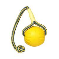 Dog Toy Fetch Ball
