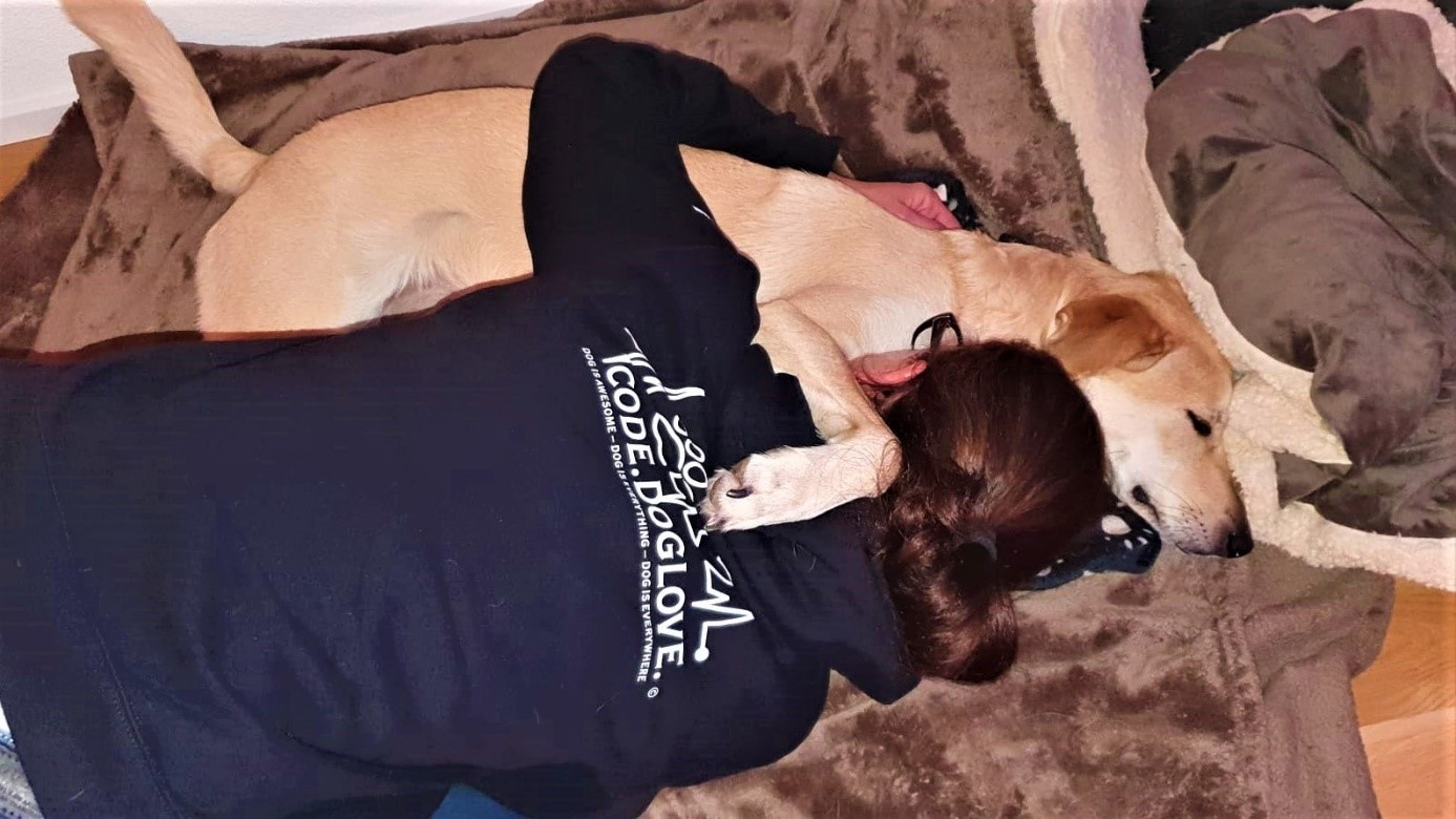 Rescue-Dog-Limba