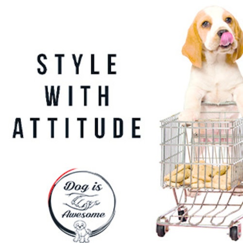 Style with Attitude