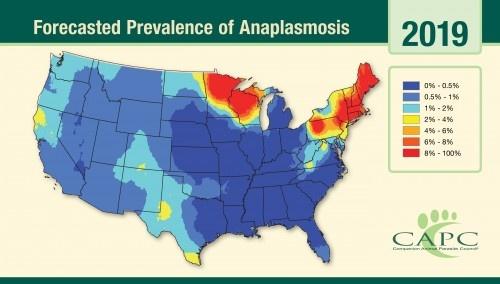 Anaplasmosis usa