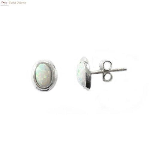 ZilverVoorJou Zilveren kleine zeer leuke witte ovale opaal oorbellen