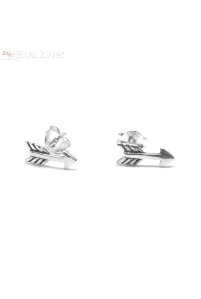 Zilveren kleine pijltjes arrow oorstekers