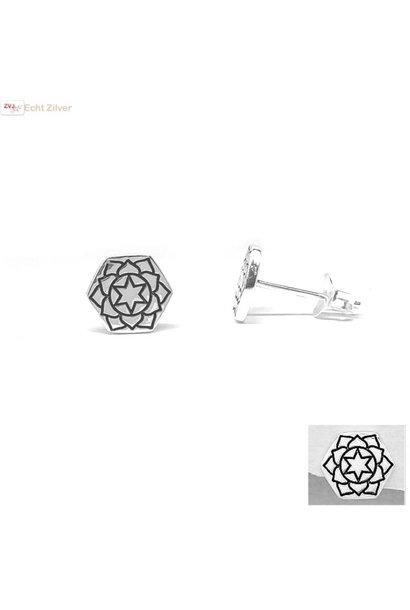 Zilveren hexagon oorstekers hart chakra