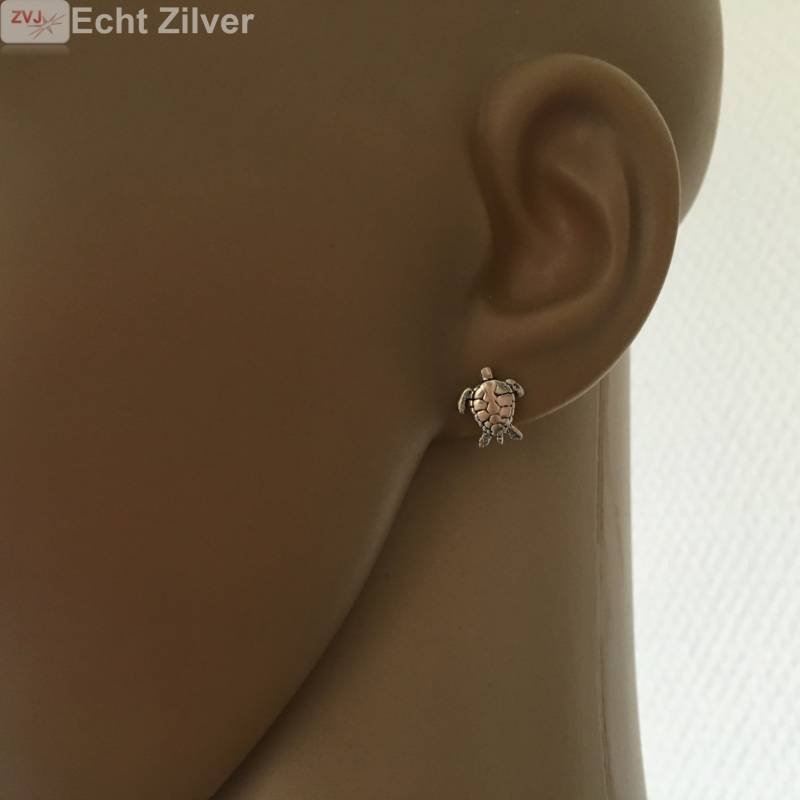 Zilveren turtle schildpad oorstekers-2