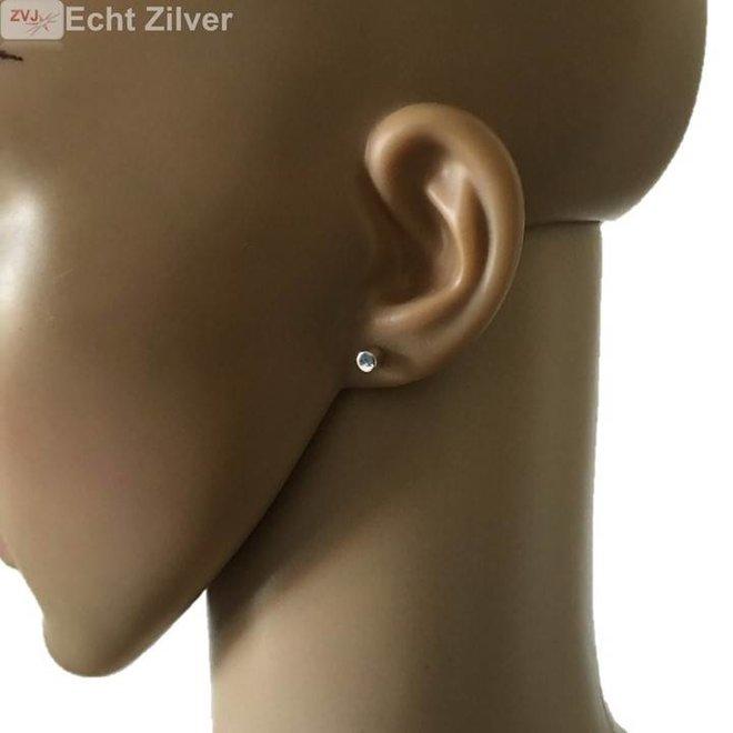 Zilveren kleine kolom oorstekers