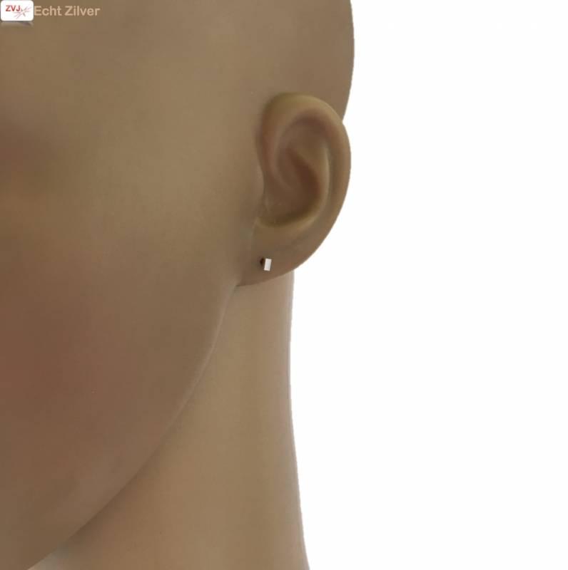 Zilveren mini rechthoekje vlak oorstekers-2