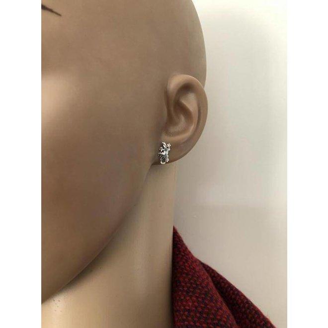 Zilveren gekko hagedis oorstekers