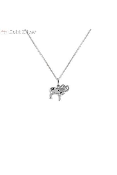 Zilveren sterrenbeeld collier ram