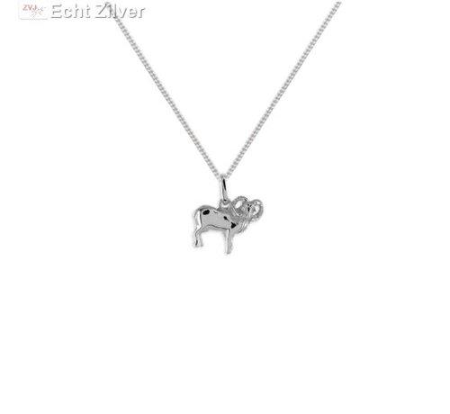 ZilverVoorJou Zilveren sterrenbeeld collier ram