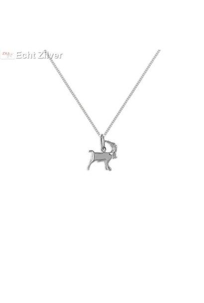 Zilveren sterrenbeeld collier steenbok