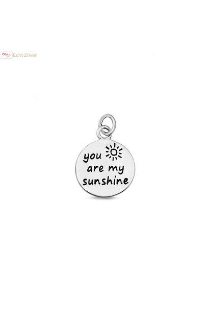 Zilveren You are my sunshine hangertje