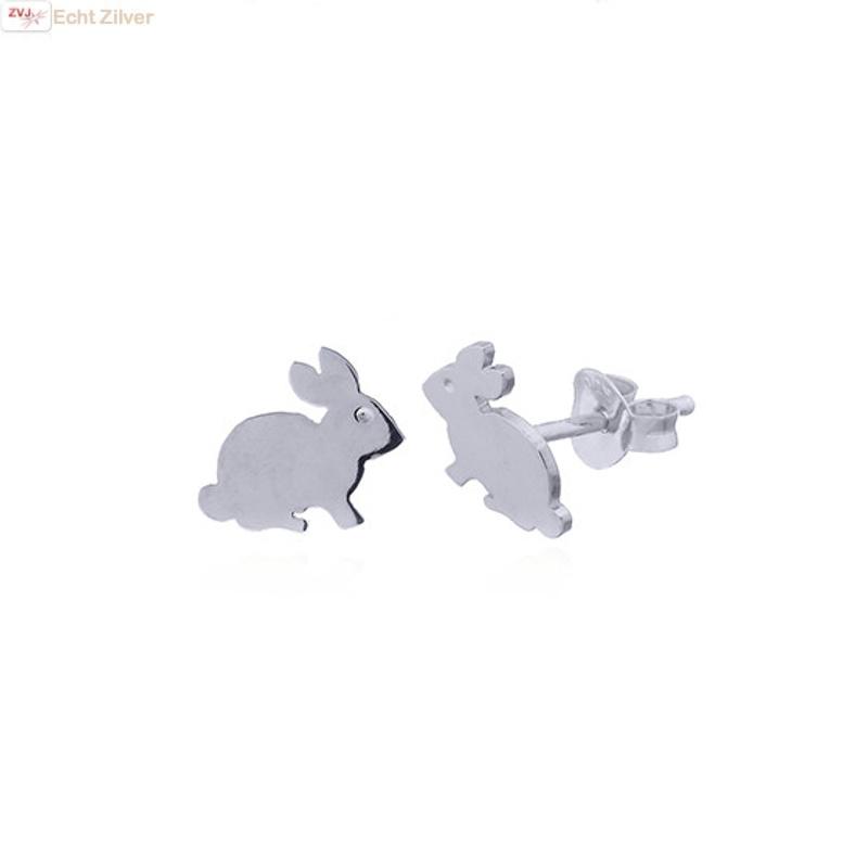 Zilveren konijn oorstekers-1