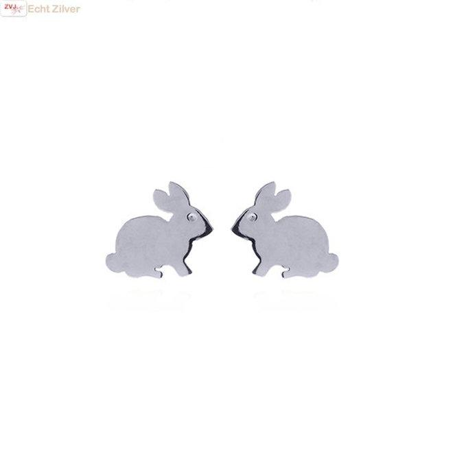 Zilveren konijn oorstekers