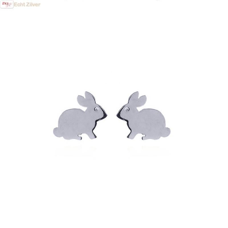 Zilveren konijn oorstekers-3