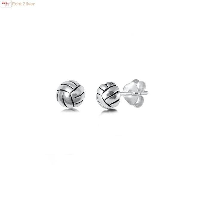 Zilveren volleybal oorstekers