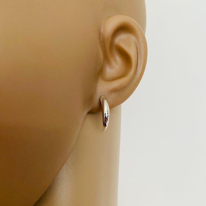Zilveren hoorn vorm oorstekers