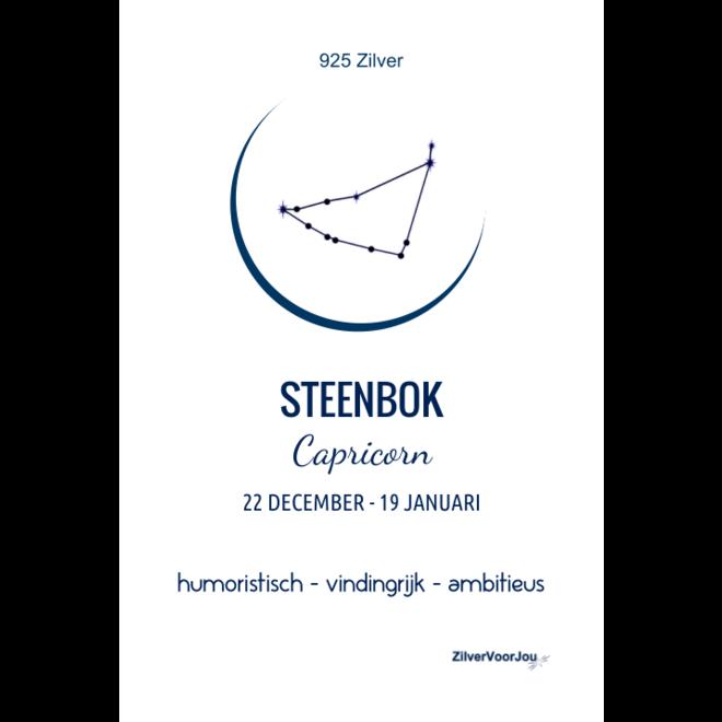 925 Zilveren Steenbok Capricorn sterrenbeeld zodiak ketting