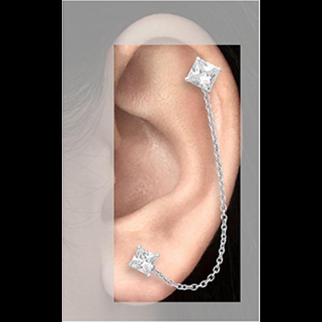 Zilveren duo oorstekers square