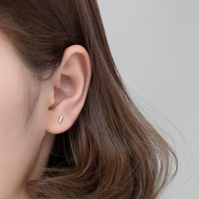 Zilveren kleine staaf oorstekers