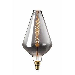 Lichtbron XXL Vienna LED lamp
