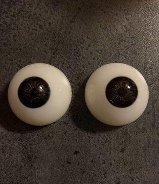 Kleur ogen zwartbruin