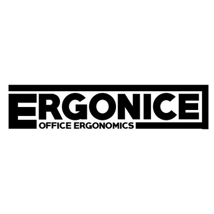 Ergonice Office Ergonomics