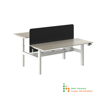 Ergonice Office Ergonomics Ergo-Duo-Move 88 (zit model)