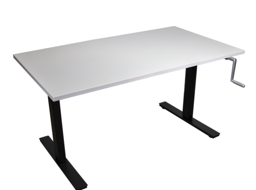 Ergonice Office Ergonomics Ergo-Move-115 (zit-sta model)
