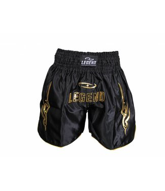 Legend Sports Kickboks broekje legend lang model goud