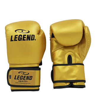 Legend Sports Bokshandschoenen goud powerfit & Protect