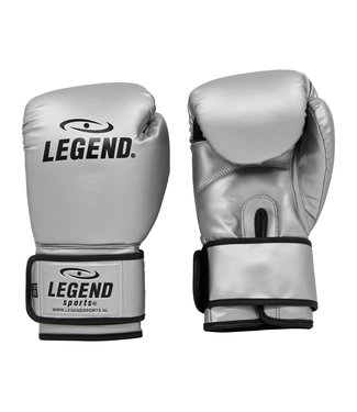 Legend Sports Bokshandschoenen Zilver powerfit & Protect