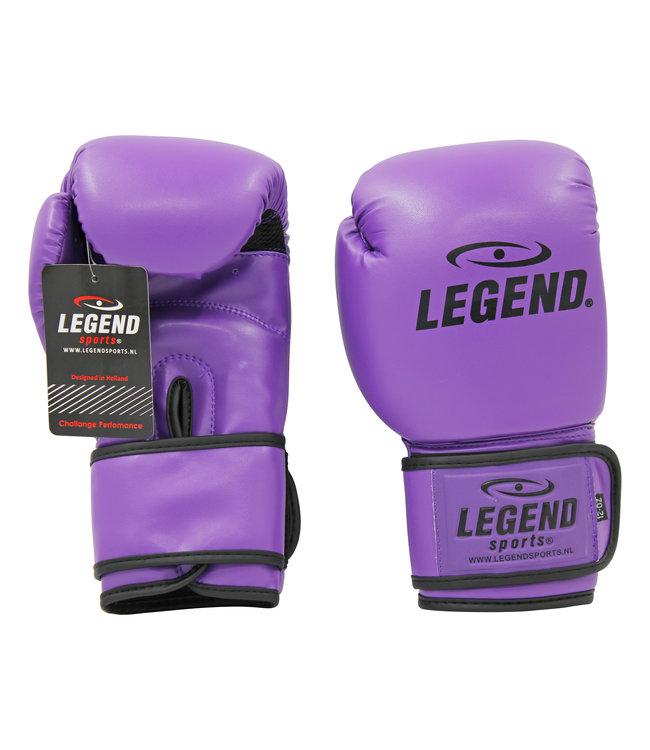 Legend Sports Bokshandschoenen Paars powerfit & Protect
