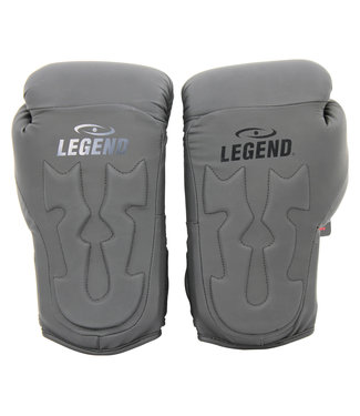 Legend Sports Bokshandschoenen Mat Zwart Power Rangers
