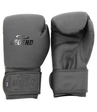 Legend Sports Bokshandschoenen Mat Zwart powerfit & Protect