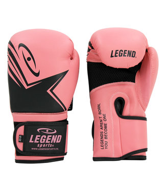 Legend Sports Dames Bokshandschoenen Legend EcoFIT Roze