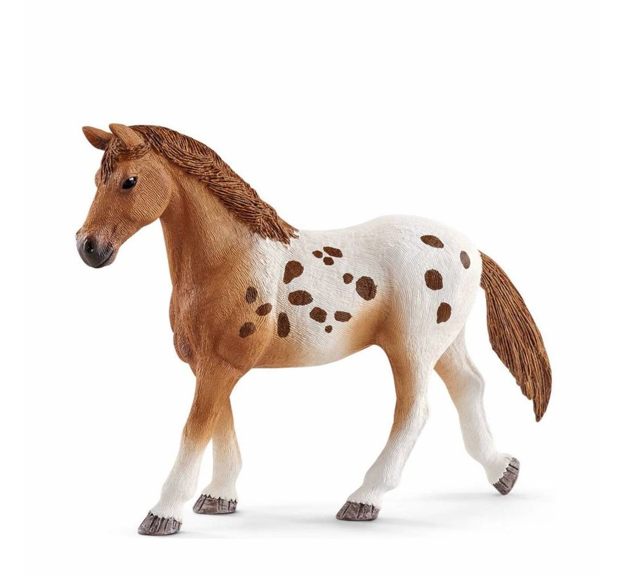 Schleich Toernooi Trainingsset Paarden