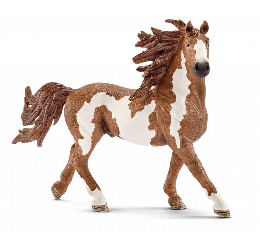 Schleich Pinto Hengst paard