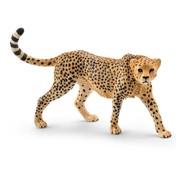 Schleich Schleich Cheetah Vrouwtje